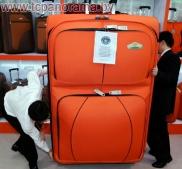 Купить чемодан в Могилеве